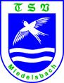 TSV Miedelsbach e.V. 1919